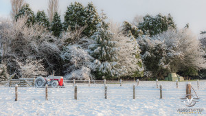 Southland_winter_005