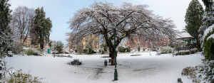 Southland_winter_006