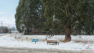 Southland_winter_011