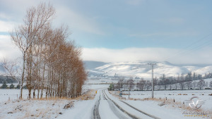Southland_winter_012