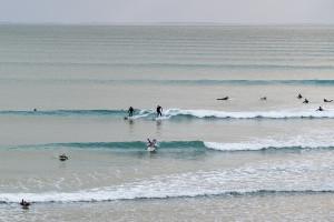 longest_wave_67