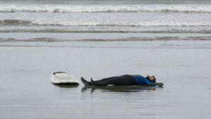 gestrandeterwal